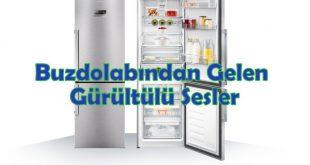Buzdolabından Gelen Gürültülü Sesler
