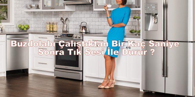 Buzdolabı Çalıştıktan Bir Kaç Saniye Sonra Tık Sesi İle Durur