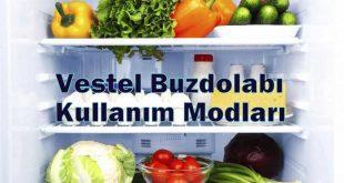 Vestel Buzdolabı Kullanım Modları